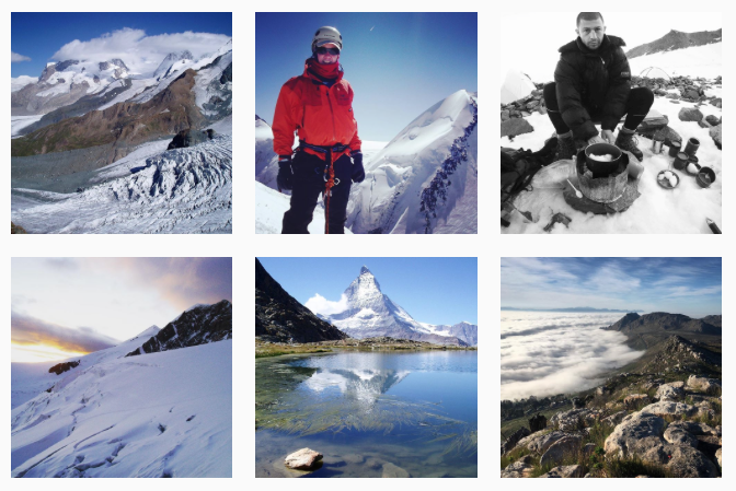 Alps_DigitalNiche_DearNiche_nichelle.png